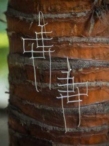 Luizza Silver Nine To Wine Geometric Sculpted Handcrafted Western Earrings