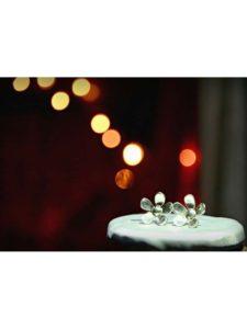 Delicate Daisy Silver Jewellery Stud Earrings