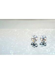 Winter Frost Silver Jewellery Stud Earrings